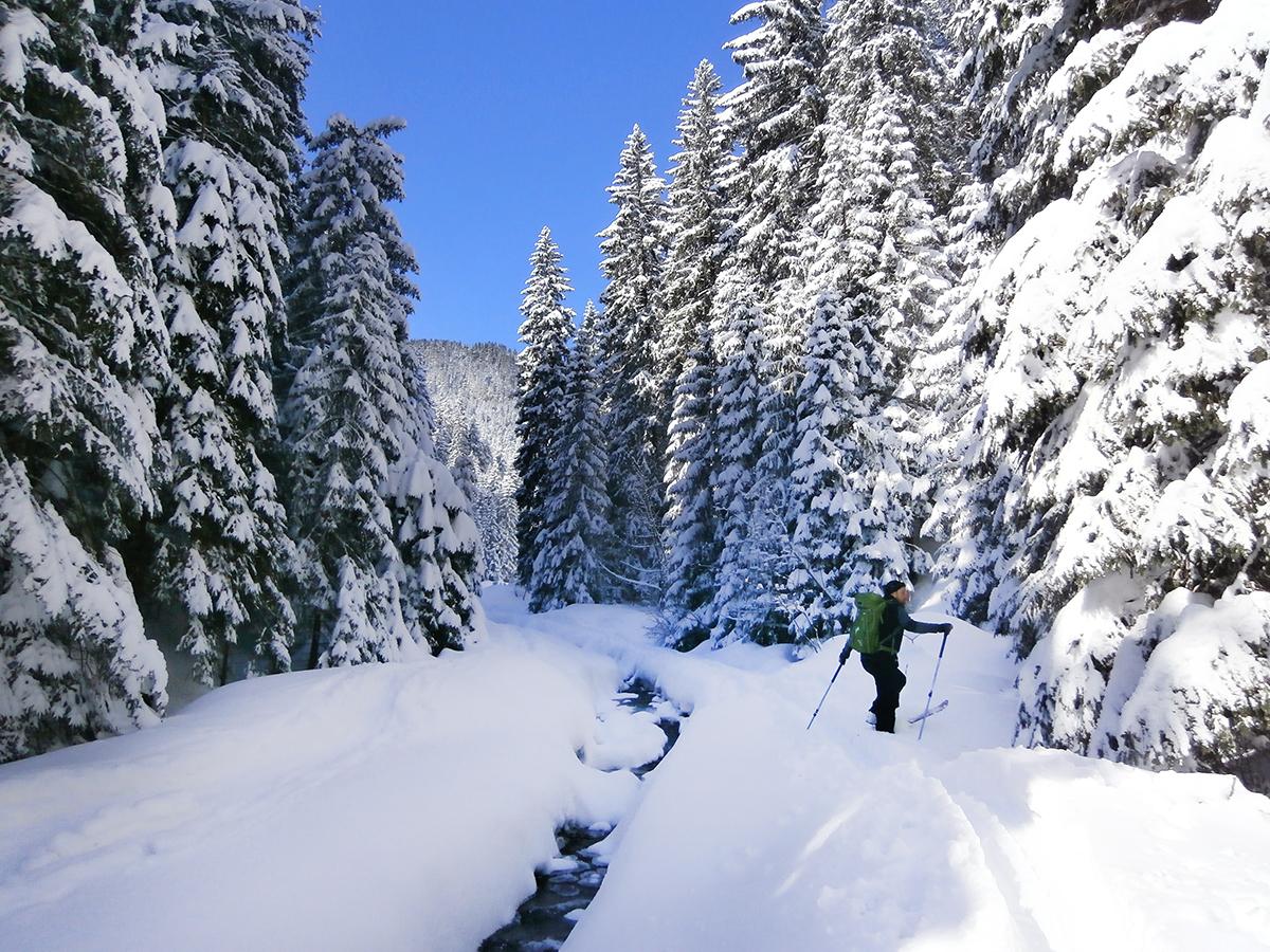 Narty w Tatrach. Skituring